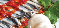 MARINATED ANCHOVY with SOUCE